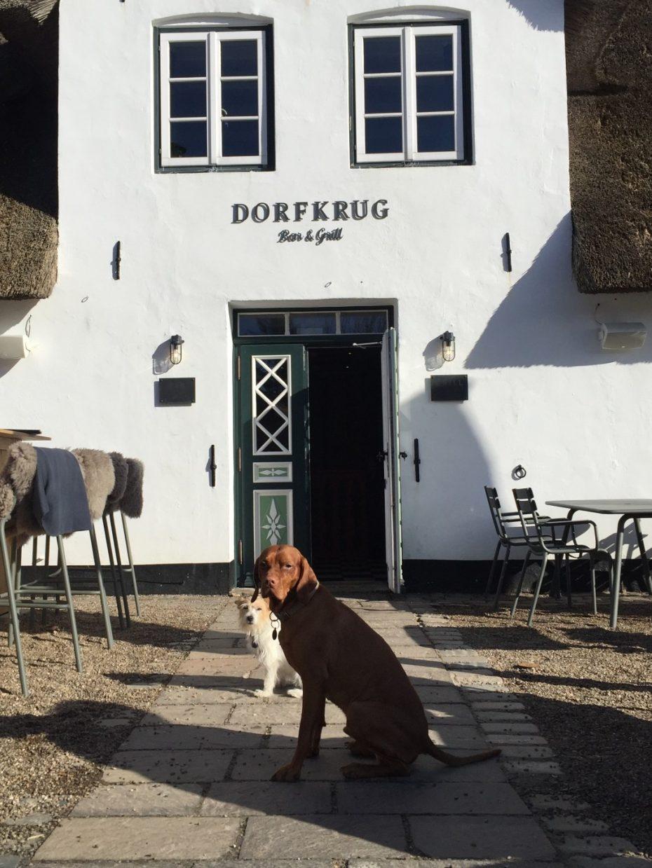 Julia Aulenbacher - Interiors +++ Dorfkrug Bar und Grill Kampen Sylt 1